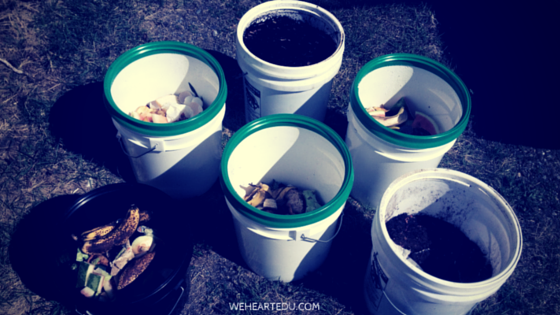 Compost Buckets for Kids